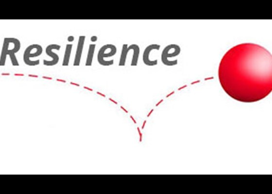 Resilience- The Ability to Bounce Back