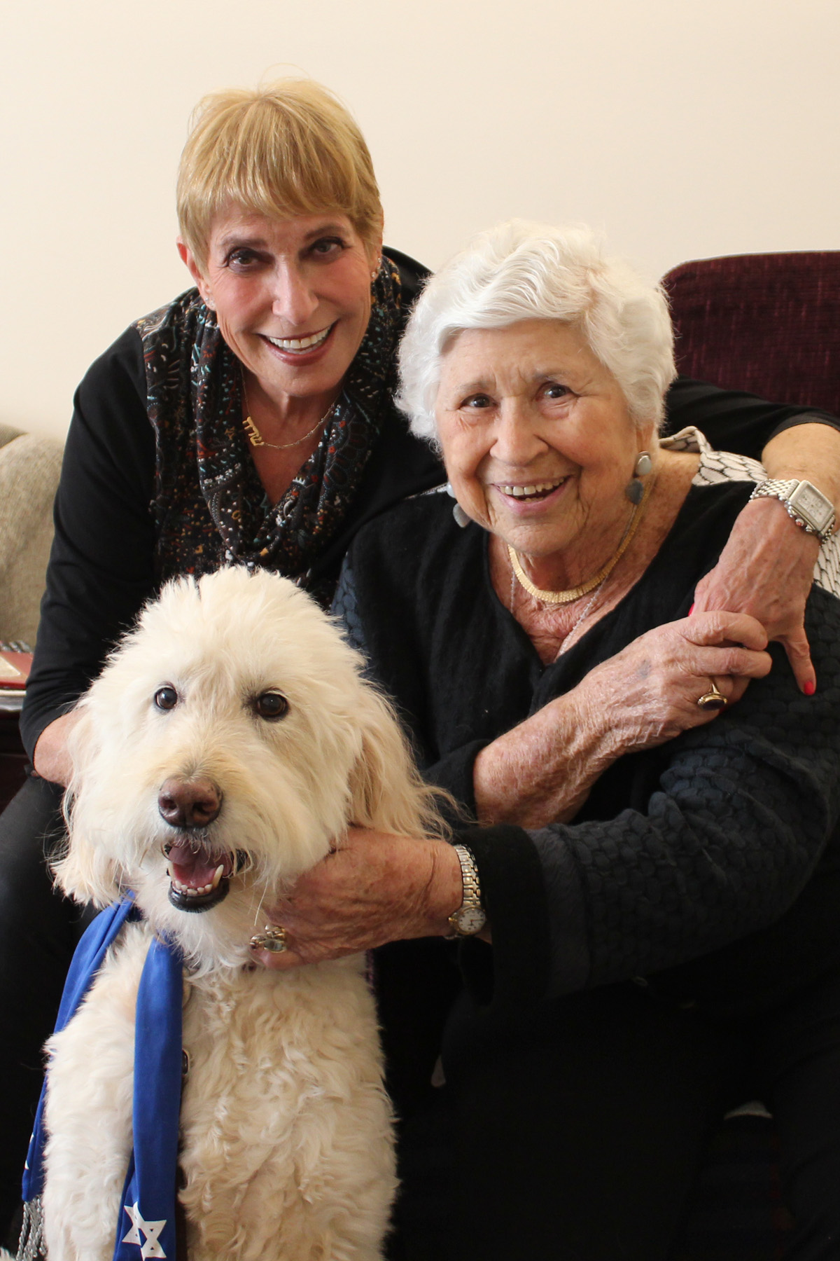 The Mutual Benefits of Pet Therapy
